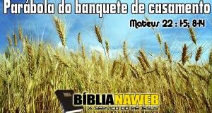 www.biblianaweb.com.br-parabolas.de.jesus-03