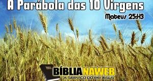 www.biblianaweb.com.br-parabolas.de.jesus.02