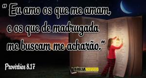 www.biblianaweb.com.br-Provérbios-8.17